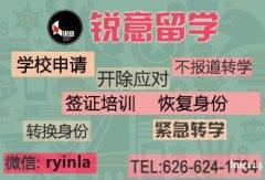 学校申请,转身份,恢复身份,转学升学,626.624.173